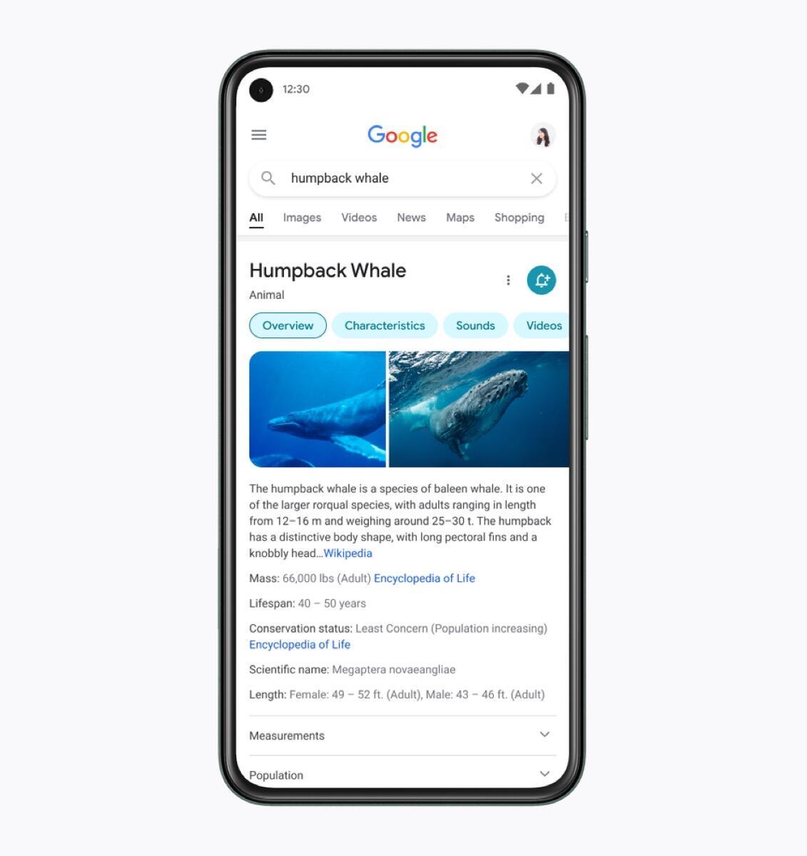 Google Suche Design Neu Inhalte