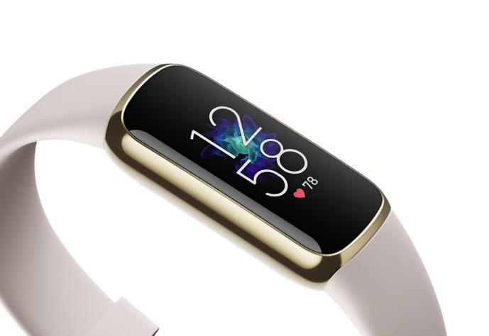 Fitbit Luxe Header