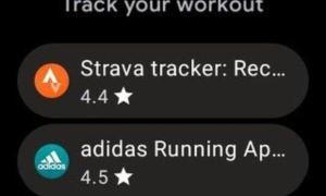 Wear 3 Google Play Store Screen1