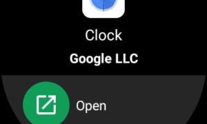 Wear 3 Google Play Store Screen3