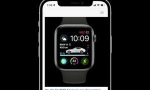 Bmw Apple Watch App