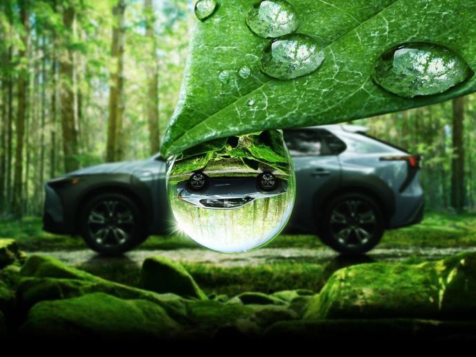 Subaru Solterra Teaser Natur
