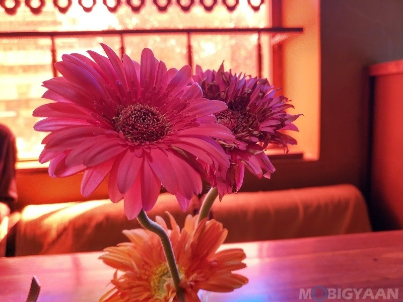 xiaomi-mix-2-review-camera-samples-daylight-24-hdr