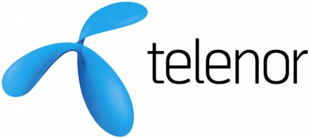 Telenor website susceptible to hacking risk-breaching of customer data became possible