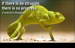 Struggle - Inspirational Quotes Images