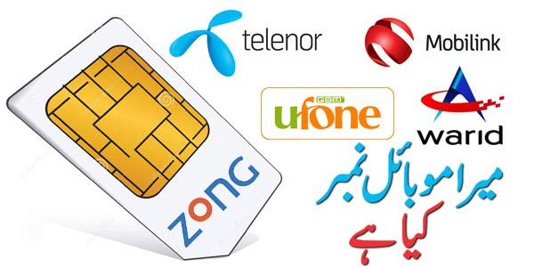 how to check telenor sim number