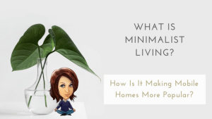 What Is Minimalist Living? How Is It Making Mobile Homes More Popular?