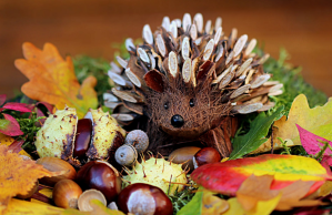 wooden hedgehog and other fall decor