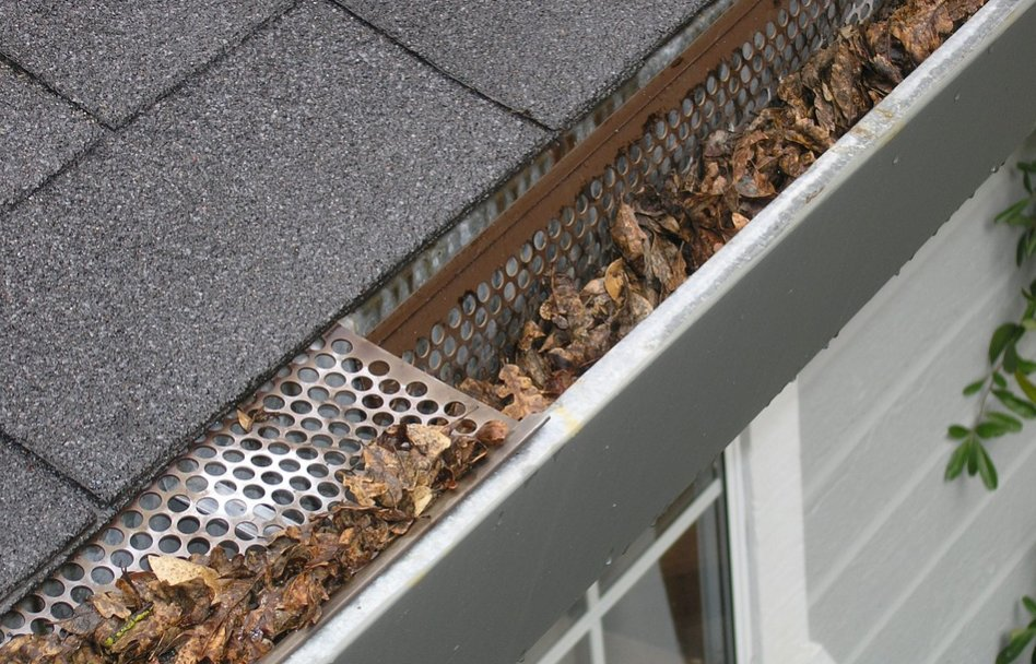House gutter with leaves