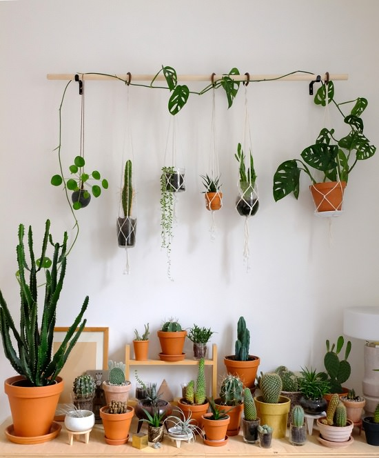 DIY hanging plants with broomstick