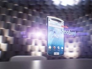 Seabird Seabird