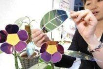 artificial-solar-leaf