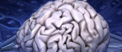 synthetic-brain