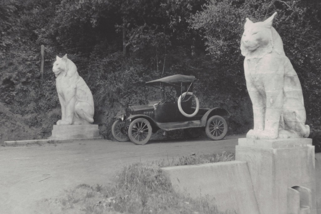 Image result for the cats los gatos