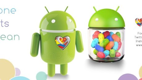 MyPhone Jelly Bean