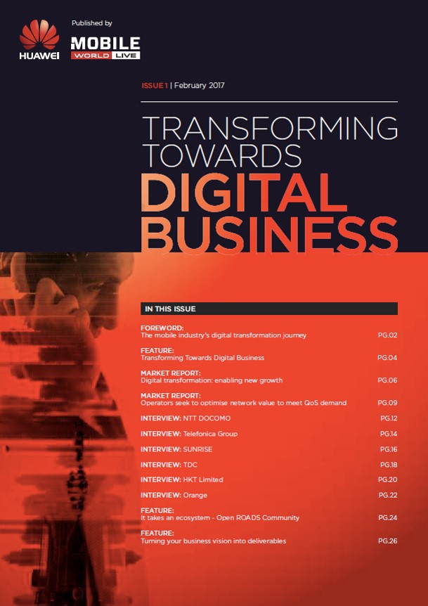 Transforming towards digital business