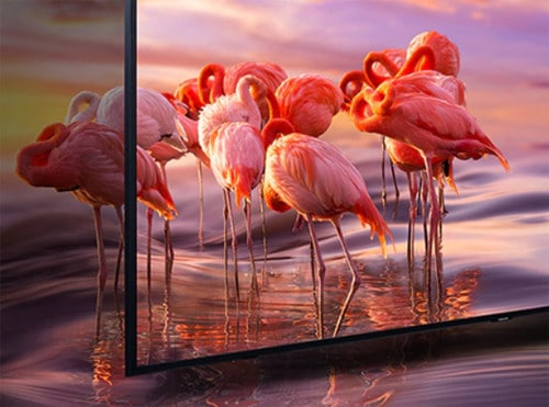 Samsung QN65Q60RAFXZA Picture Quality