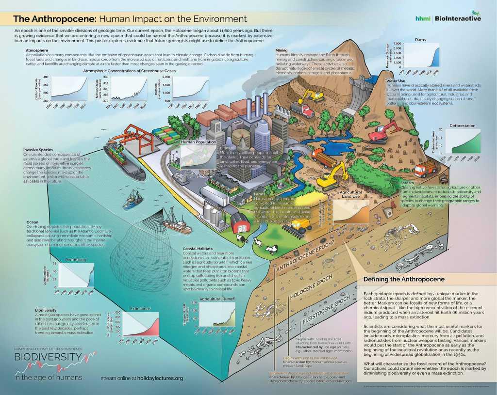 Bienvenue Dans L Anthropocene