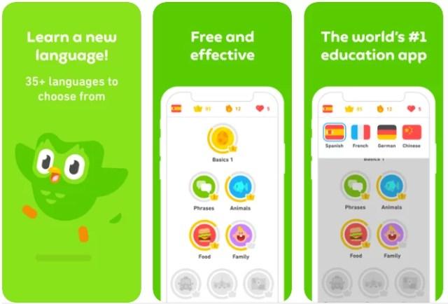 How to make your own language app like Duolingo? | Mobindustry