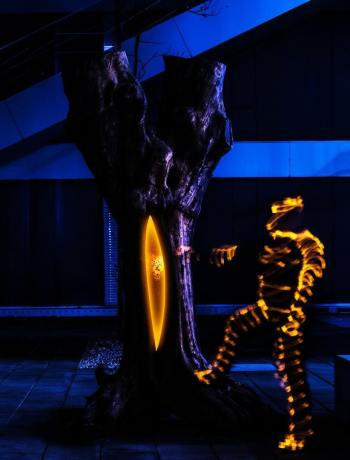 Der Baum des Wissens
