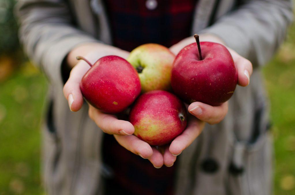 So schmeckt Glück - Symbolbild for das Rezept Hirse mit gedünstetem Apfel und Cashewkernen - Photo by Aarón Blanco Tejedor on Unsplash