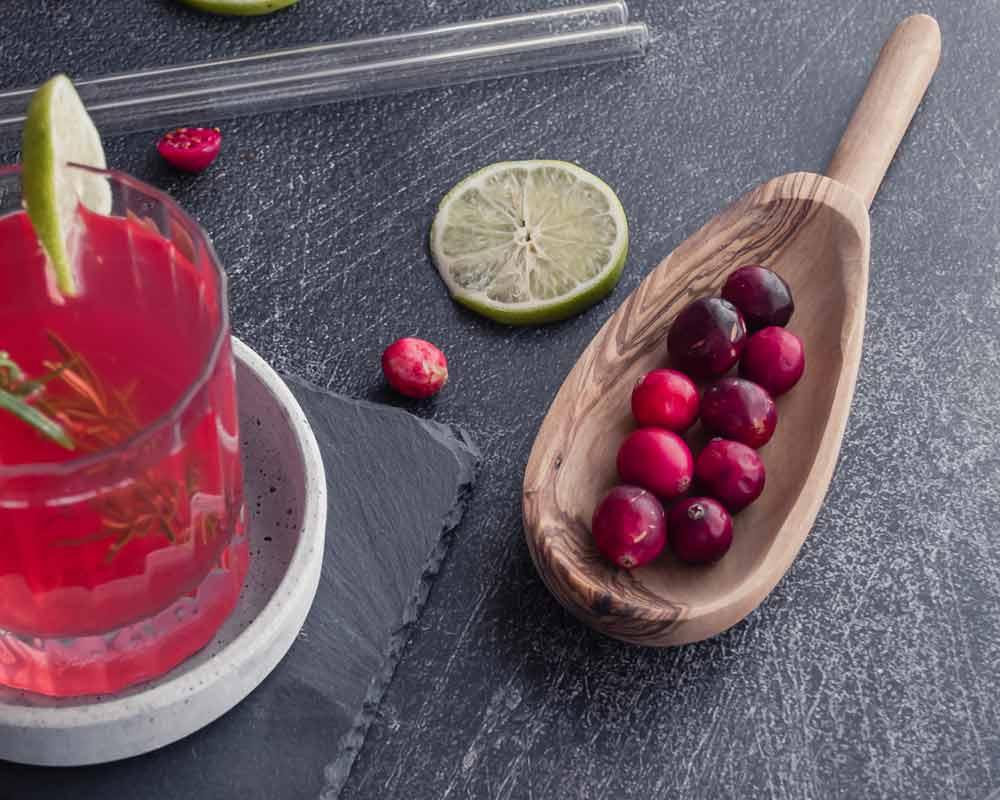 Zutaten zum Canberry Sirup aus dem Little Library Cookbook