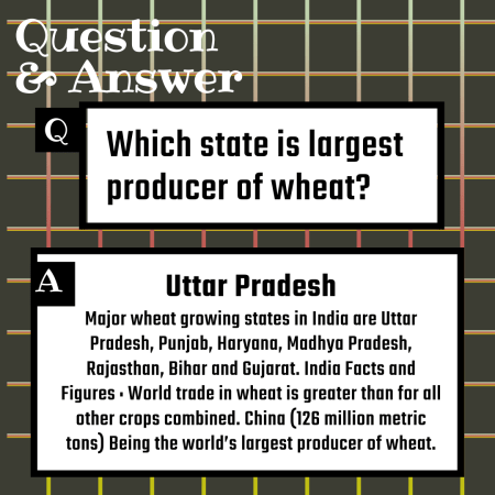 Which state is largest producer of wheat?