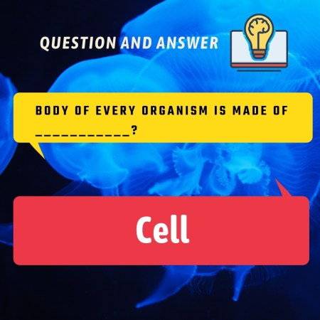 Body of every organism is made of ___________?