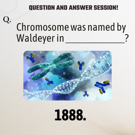 Chromosome was named by Waldeyer in _____________?