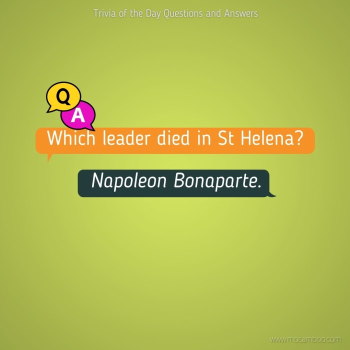 Which leader died in St Helena?