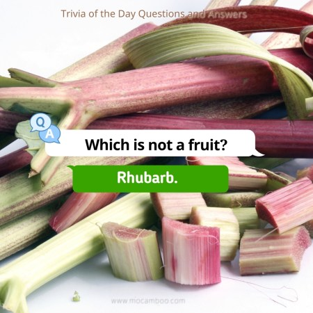 Which is not a fruit?