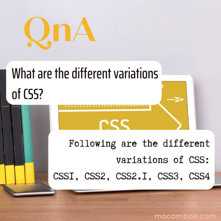 What are the different variations of CSS?