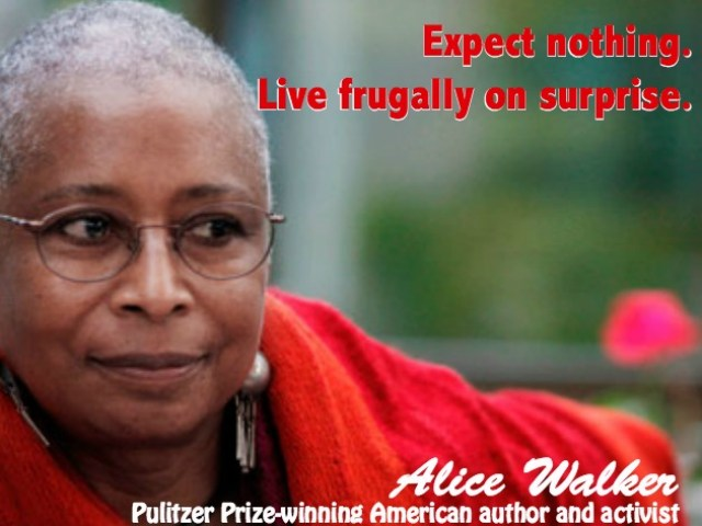 Inspirational Quote - Alice Walker
