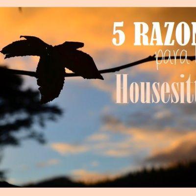 5 RAZONES PARA HACER HOUSESITTING