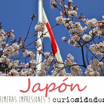 JAPÓN: PRIMERAS IMPRESIONES Y CURIOSIDADES