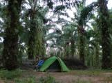 Earth-Wide-Walk-Tailandia-camping-Lamae