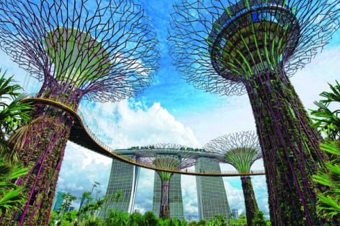 best attractions in Singapore, Bay Gardens 7