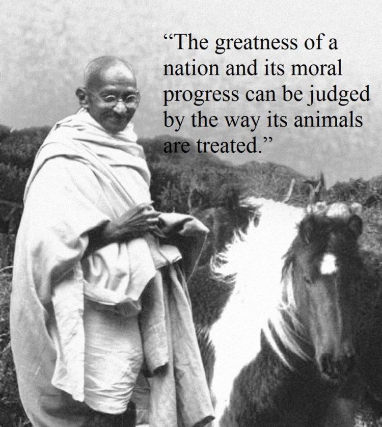 famous quotes of Gandhi 11
