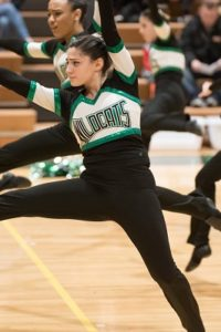 1/13/2018, Damascus High School, Damascus Pompon Invitational, Hornets, Jeffrey Vogt Photography,   MCPS, MoCoDaily, Montgomery County Maryland, Photography by Jeffrey Vogt, Photos by Jeffrey Vogt,   Poms, Varsity Poms, Wildcats, Walter Johnson High School, Division 1