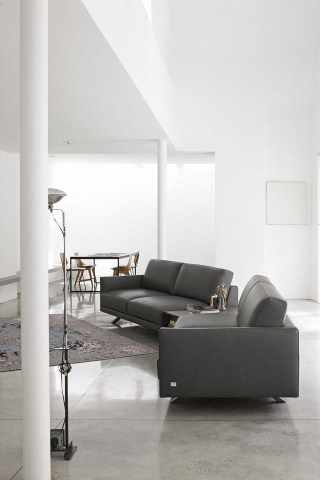 Plain interioris - living room with dark leather sofa.