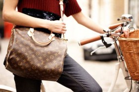 LV-Speedy Bandouliere bags-02
