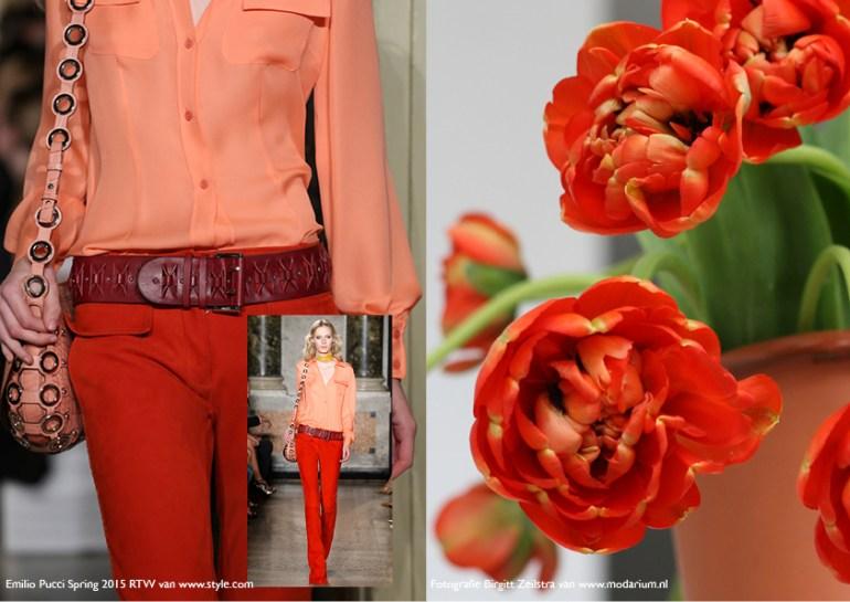 Modarium Think Pink moodboard 07 met afbeedingen uit de spring 2015 RTW collectie van Emilio Pucci en rode tulpen in terra cotta vaas