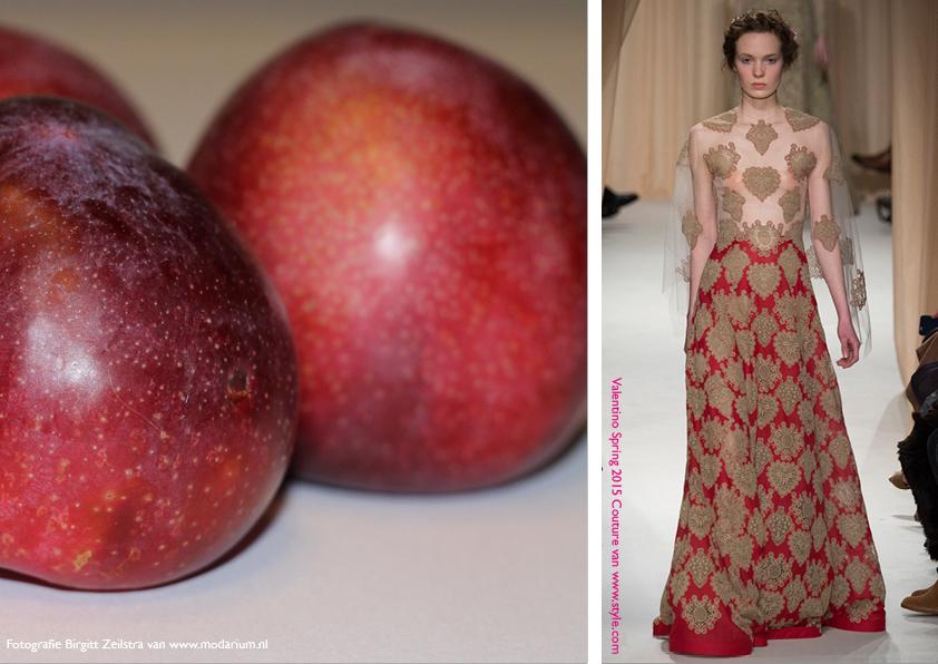 Modarium Think Pink moodboard 15 met een afbeelding uit de spring 2015 couture collectie van Valentino en rode pruimen
