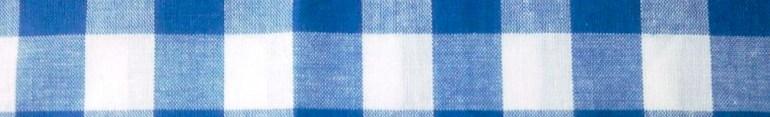 Modarium beeld van een Boeren bont ruit of Gringham ruit in blauw wit