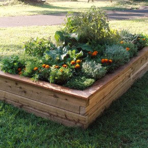 Benedetto - Raised Garden Beds
