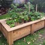 Raised Garden Beds Planters On Wheels Sub Irrigation Wicking System In Melbourne