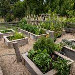 Raised Garden Beds Shop Online Modbox
