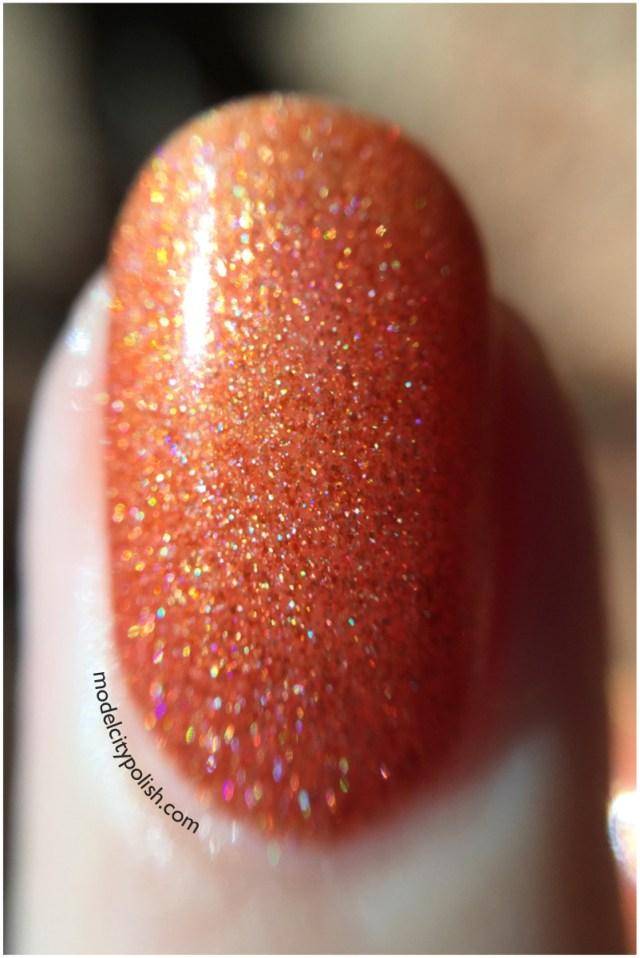 Pumpkin Spice 5