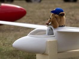 Fluffy pilot