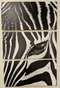 """**ITEM NOW SOLD** 3-Piece printed canvas; 'Zebra Stare' by Rob Larson. Never used. As shown: 40"""" x 63"""" Current List: $525. Modele's Price: 195."""